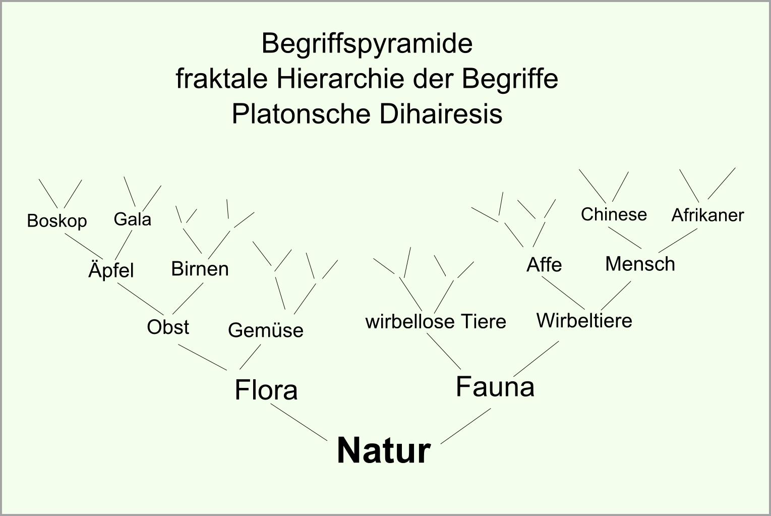 Begriffspyramide abb17