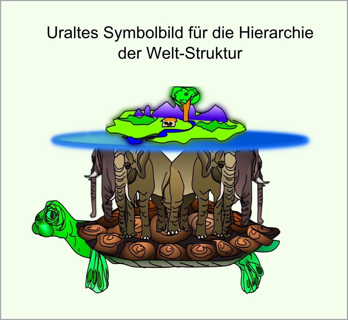 Schildkröte abb29