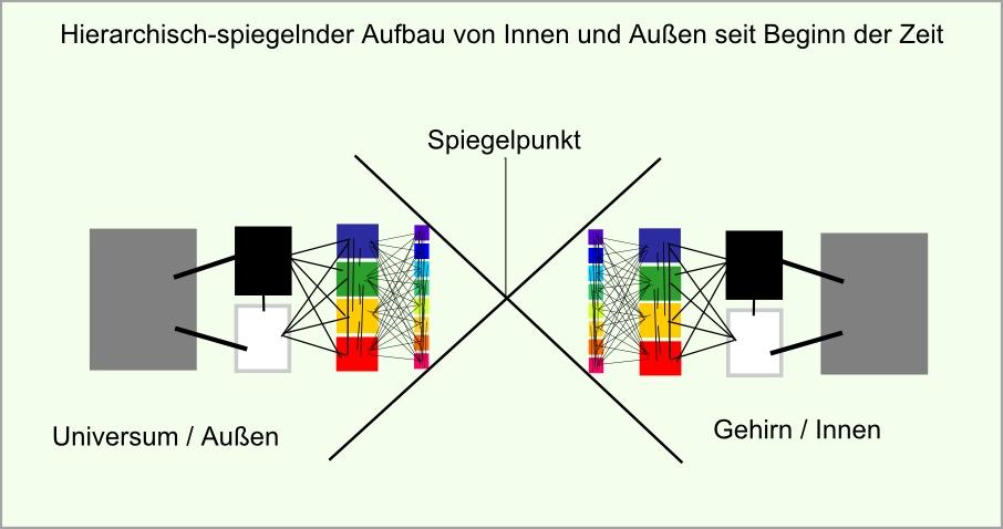 Spiegel UNiversum Gehirn abb46